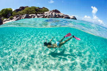 Barbados Shore Excursion: Carlisle Bay Shipwreck Snorkel Adventure