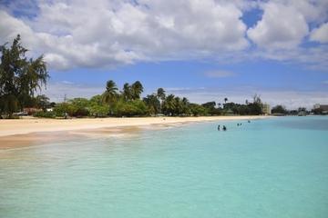 Barbados Shore Excursion: Island Highlights Half-Day Tour