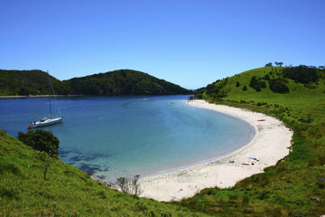 Bay of Islands Day Tour from Auckland