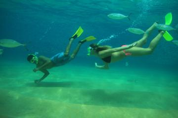 Beach Hopper Snorkeling Tour in Los Cabos