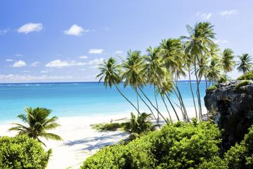Beautiful Barbados Coastal Sightseeing Tour