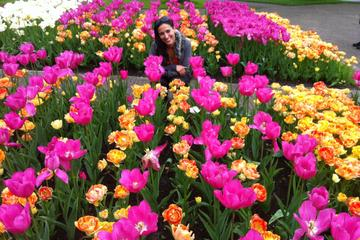 Behind-the-Scenes Keukenhof Gardens Day Trip from Amsterdam Including Picnic Lunch and Haarlem Walking Tour