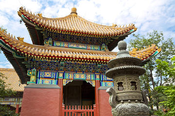 Beijing City Coach Tour: Hutongs, Beijing Zoo and Lama Temple