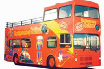 Belfast Shore Excursion: Hop-On Hop-Off Tour