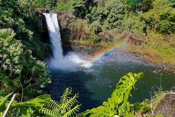 Big Island Waterfall Tour from Kona: Waipio Valley, Hamakua Coast and Akaka Falls
