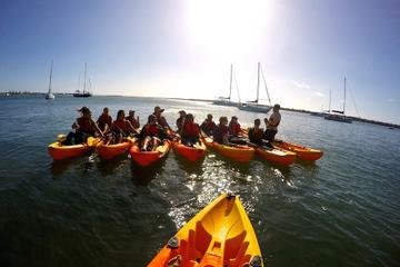 Birthday Wave Break Island Kayak Tour from the Gold Coast