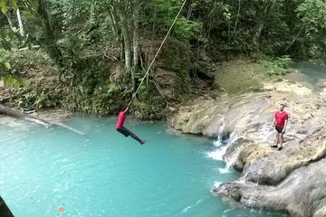 Blue Hole and River Gully Rain Forest Adventure Tour from Kingston