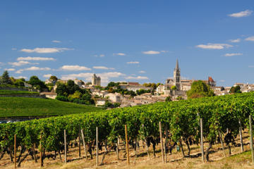 Bordeaux Super Saver: Médoc Wine Tour and Lunch plus St-Emilion or Graves