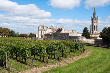 Bordeaux Super Saver: Small-Group Wine Tasting and Lunch plus St-Emilion Wine Tour