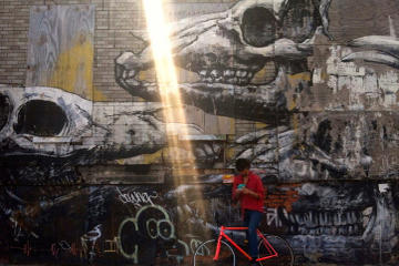Brooklyn Urban Art Bike Tour