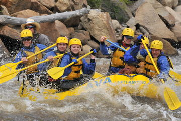Brown's Canyon Half Day Rafting Trip
