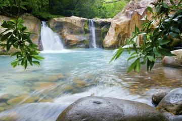 Buena Vista Rainforest Combo Tour