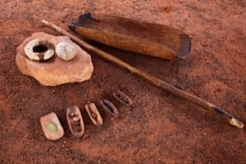 Bush Tucker Indigenous Food Tour from Ayers Rock