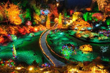 butchart gardens tours. Butchart Gardens Holiday Lights Tour Tours W