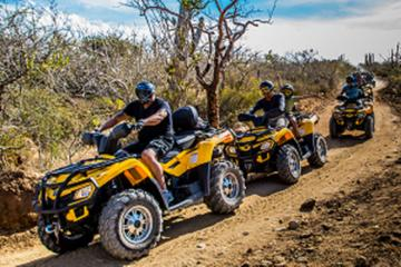 Cabo San Lucas and Margaritas Beach 4x4 ATV Adventure
