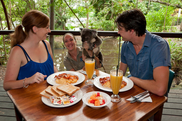 Cairns Tropical Zoo Morning Tour including Breakfast