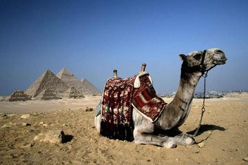 Cairo 1 Day Tour by Plane from Sharm El Sheikh