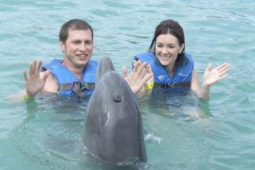 Cancun Dolphin Swim Adventure