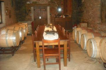 Carmelo Wineries Day Trip: The Colonia Wine Road