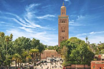Casablanca Shore Excursion: Private Marrakech Tour