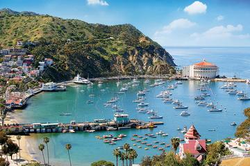 Catalina Island Day Tour