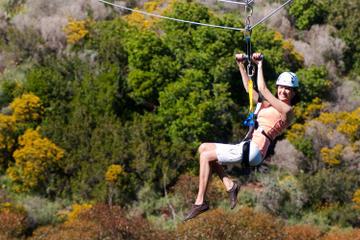 Catalina Island Zipline Eco-Tour from Anaheim or Los Angeles