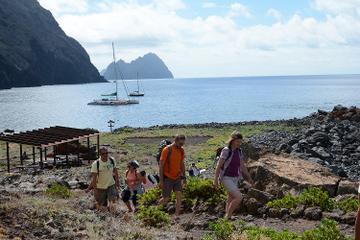 Catamaran Day Cruise to Desertas Islands from Funchal
