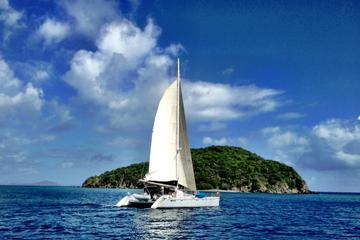 Catamaran Party Cruise and Dunn's River Falls Tour from Falmouth