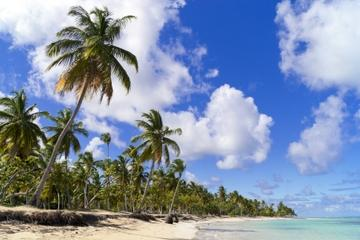 Cayo Paraiso Deserted Island Tour from Puerto Plata