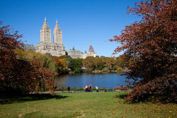 Central Park Photography Tour