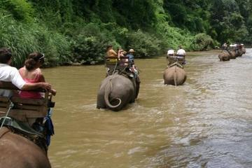 Chiang Dao Elephant Jungle Trek and Ping River Rafting Tour from Chiang Mai
