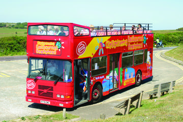 City Sightseeing Eastbourne Hop-On Hop-Off Tour