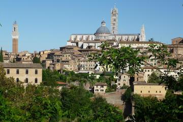 Classic Siena Walking Tour