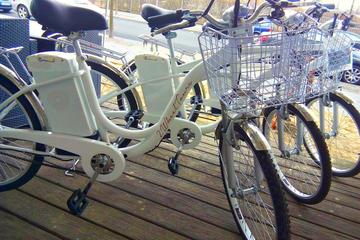 Comprehensive Electric Bike Tour of Berlin in a Small Group