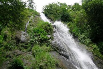 Cool Breeze Viento Fresco Waterfall Tour