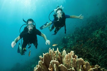 Cozumel Dive and Drive Tour with Ferry Ride from Playa del Carmen