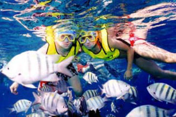 Cozumel Scenic Drive and Snorkeling Transportation Included From Cancun