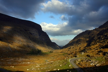 Cultural Tour Including The Gap of Dunloe Experience from Killarney