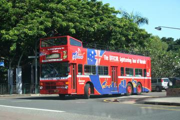 Darwin Shore Excursion: Darwin Hop-on Hop-off Bus Tour