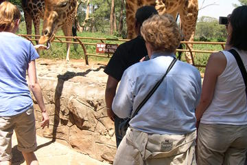 Day Tour from Nairobi: David Sheldrick Elephant Orphanage and Giraffe Center