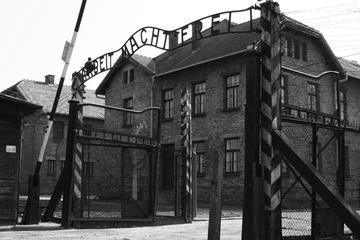 Day Trip to Auschwitz-Birkenau and Wieliczka Salt Mine from Krakow including Lunch