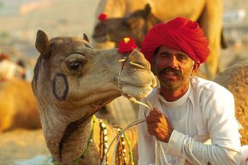 Day Trip to Pushkar