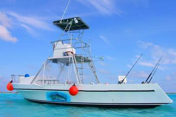 Deep Sea Fishing Tour and Beach from Cozumel