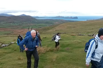 Dingle Day Tour from Killarney