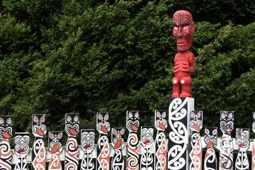 Discover Rotorua Morning City Tour