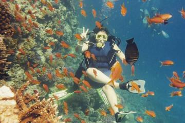 Dive Trip in Hurghada with Two Dive Sites