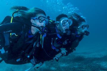 Diving Tour at Bona and Otoque Islands