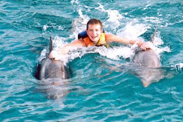 Dolphin Royal Swim Including Aquaventuras Park Entrance