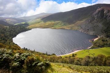 Dublin Shore Excursion: Wicklow Mountains and Dublin City Tour