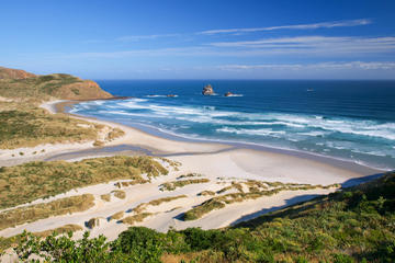 Dunedin Shore Excursion: Small-Group Tour of Dunedin and the Otago Peninsula